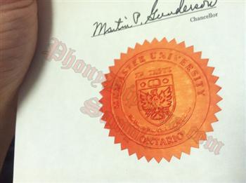 Phony diploma fake diploma seal samples phonydiploma embossed red emblem yelopaper Images
