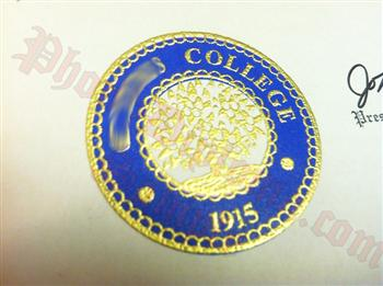 Fake diploma two tone emblem raised gold on blue foil background