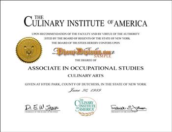 Culinary Institute Certificate Fake Diploma from PhonyDiploma Cert-Culinary