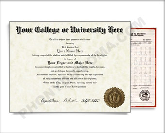 Fake USA College or University Diploma and Transcripts - Straight Name / Right Emblem