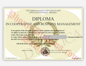 Fake diploma samples from africa phonydiploma this is the name field on the admin yelopaper Images