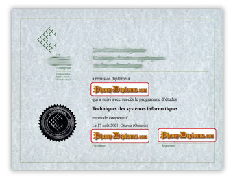 La Cite collegiale - Fake Diploma Sample from Canada