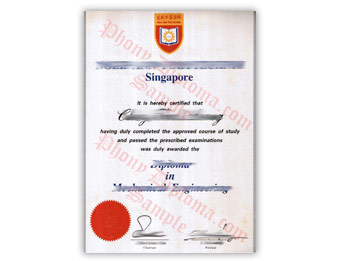 Ngee Ann Polytechnic - Fake Diploma Sample from Singapore