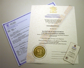 International Canada Fake Diploma and Transcript Package With Embossed Foil