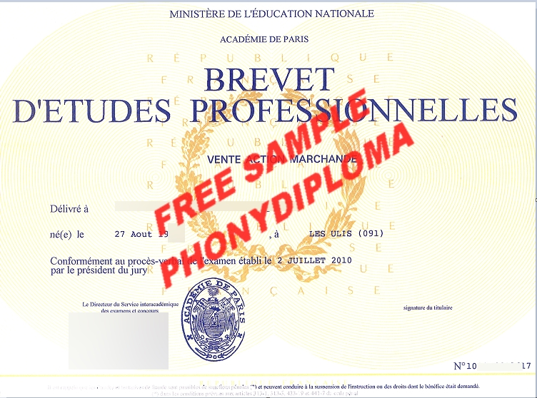 Brevet D'etudes Professionnelles Academy Of Paris Free Sample From Phonydiploma