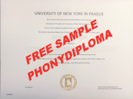Czech Republic University Of New York In Prague Free Sample From Phonydiploma