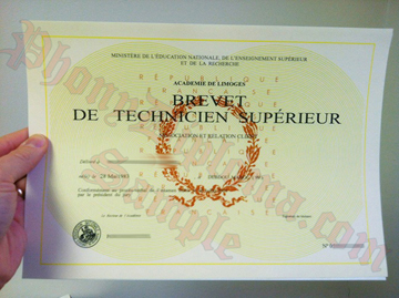 Brevet De Technicien Superieur French Fake Diploma Sample From Phonydiploma
