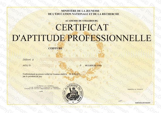 France Certificat Strasbourg D'aptitude Professionnelle Fake Diploma From Phonydiploma