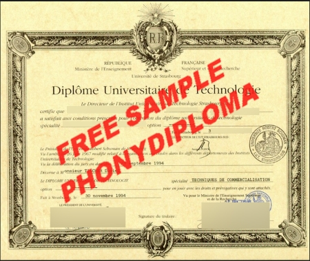 France Institut Universitaire De Technologie Free Sample From Phonydiploma