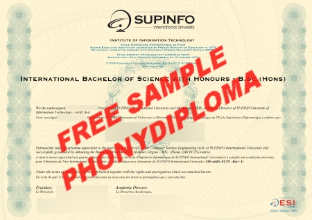 France Supinfo Free Sample From Phonydiploma