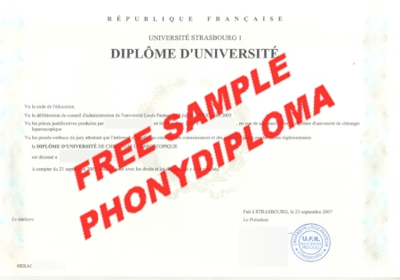 France Strasbourg University Free Sample From Phonydiploma