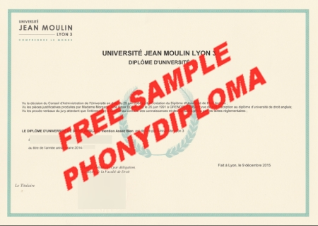 France Université Jean Moulin Lyon 3 Free Sample From Phonydiploma