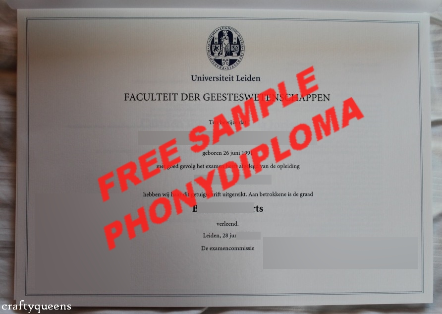 Fake Diploma from German University German D