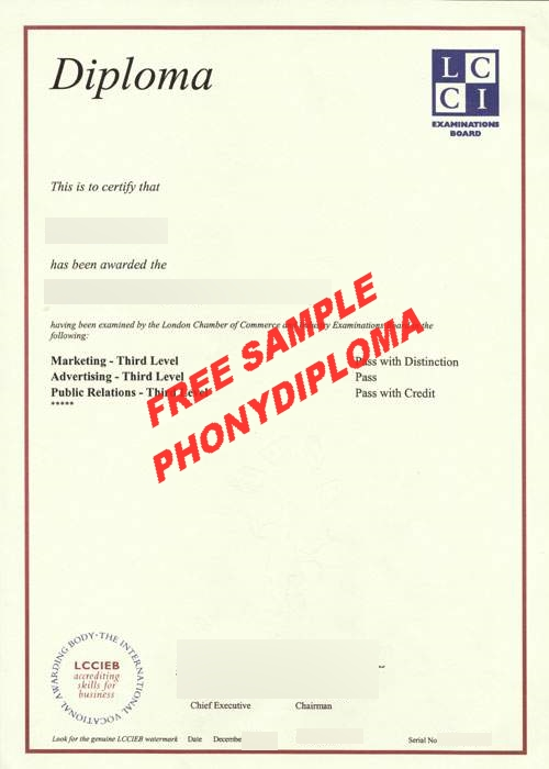 Lcci Examination Board Free Sample From Phonydiploma