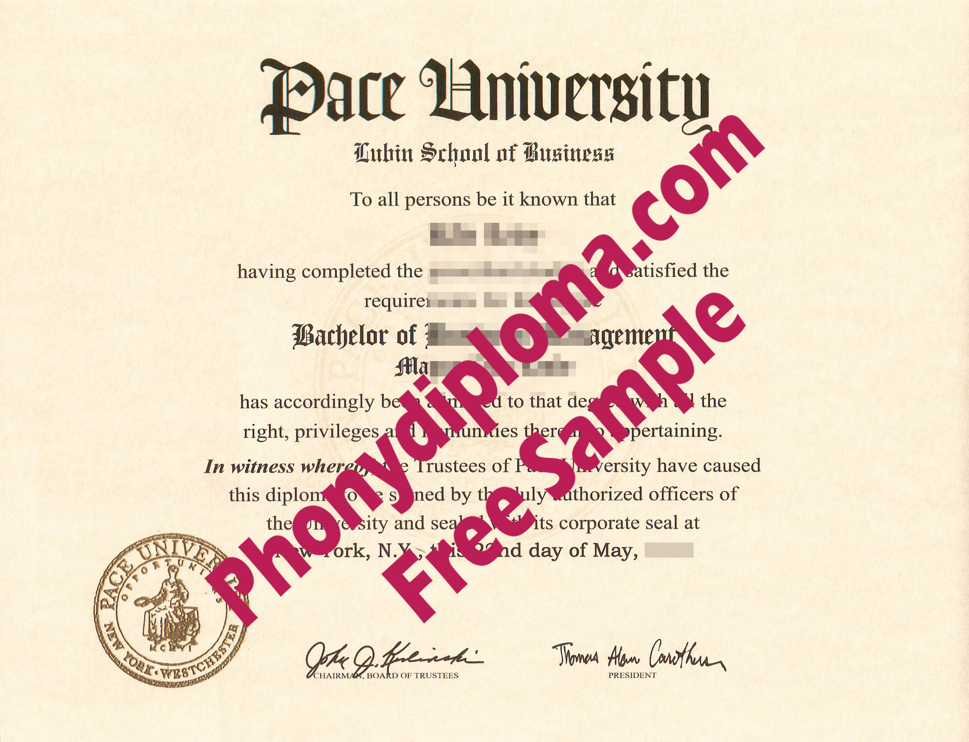 Pace University Free Sample From Phonydiploma