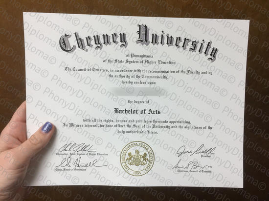 Usa Cheney University Free Sample From Phonydiploma
