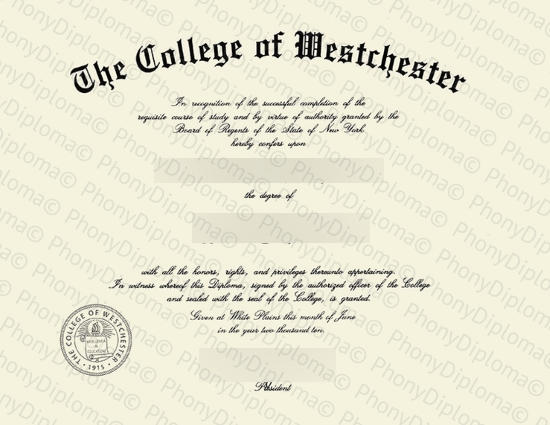 Usa College Of Westchester Free Sample From Phonydiploma