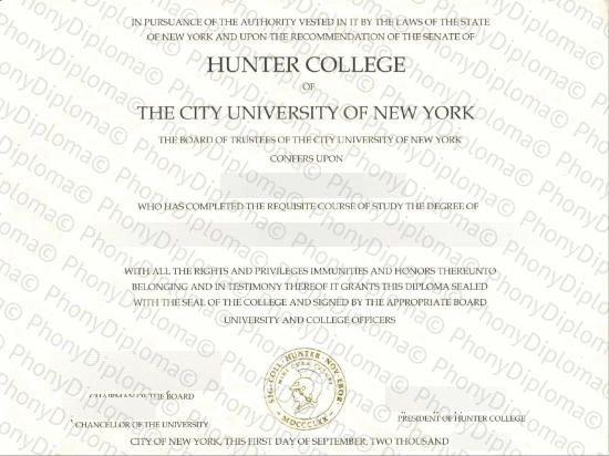 Usa Hunter College Of The City University Of New York Free Sample From Phonydiploma