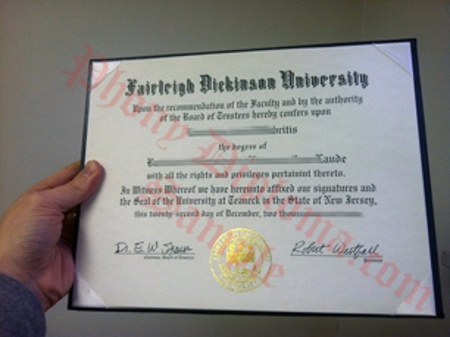 Usa New Jersey Fairleigh Dickinson University Free Sample From Phonydiploma