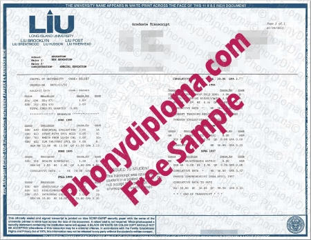 Usa New York Long Island University Actual Match Transcripts Free Sample From Phonydiploma