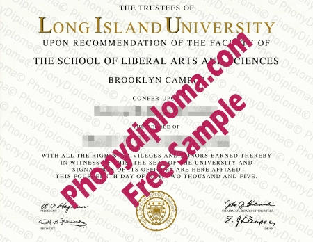 Usa New York Long Island University Free Sample From Phonydiploma