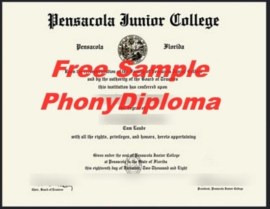Usa Pensacola Junior College Free Sample From Phonydiploma
