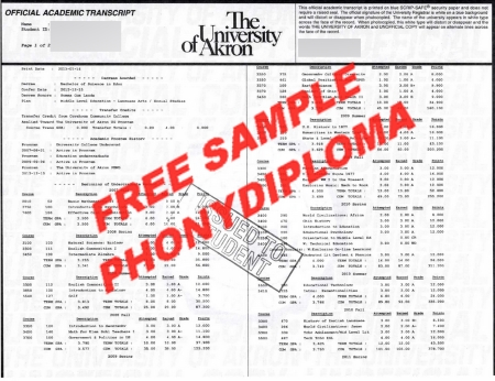 Usa The University Of Akron Actual Match Transcript Free Sample From Phonydiploma