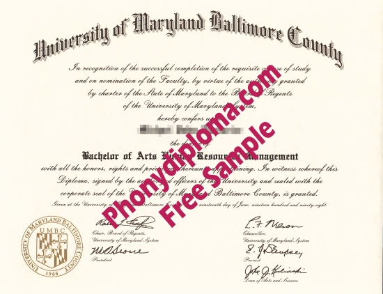 Usa University Of Maryland Baltimore Country Free Sample From Phonydiploma