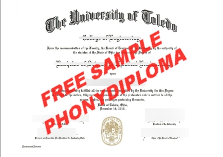 Usa University Of Toledo Free Sample From Phonydiploma