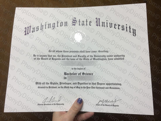 Usa Washington State University Free Sample From Phonydiploma