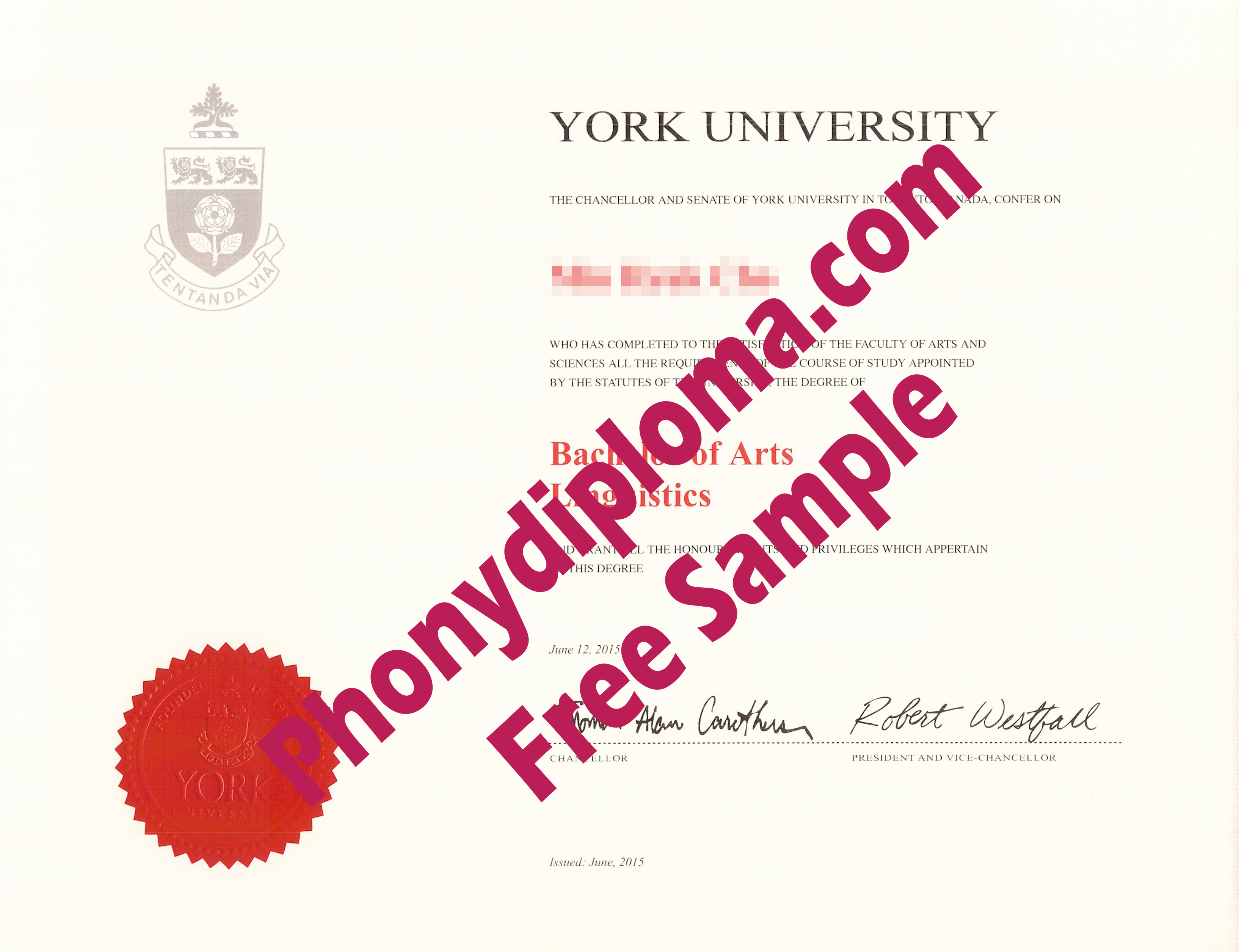 York University Free Sample From Phonydiploma