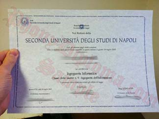 Seconda Universita Degli Studi Di Napoli  Italy Fake Diploma Sample From Phonydiploma