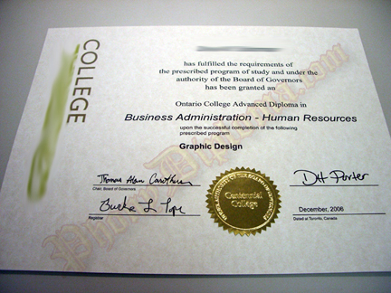 Fake Diploma Sample 2