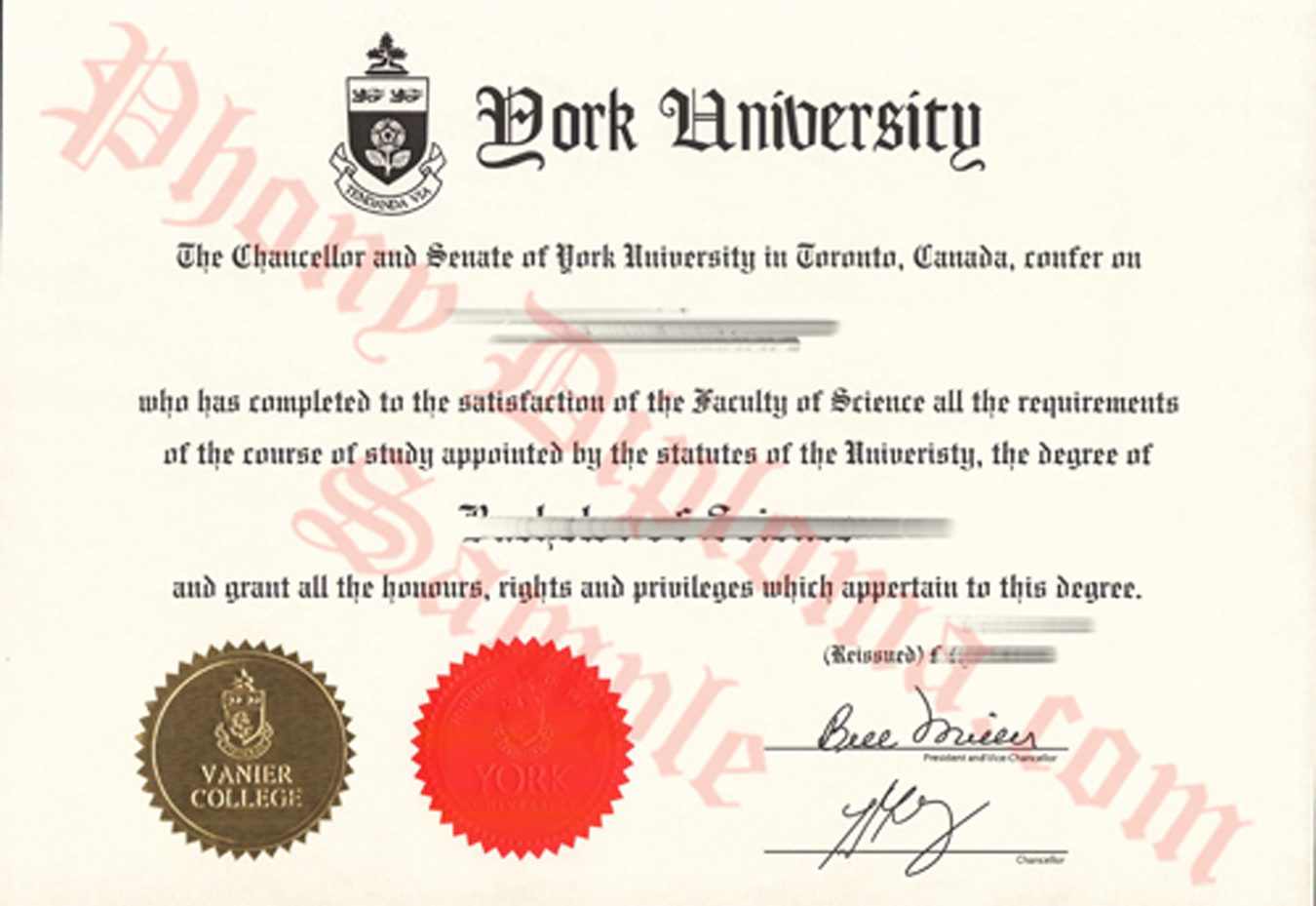 york university bs vanier college fake diploma from canadian school from phonydiploma