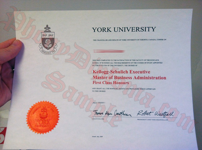 York University Kellogg Schulich Executive Photo