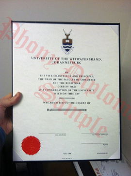 University Witwatersrand Africa Fake Diploma Sample From Phonydiploma (2)