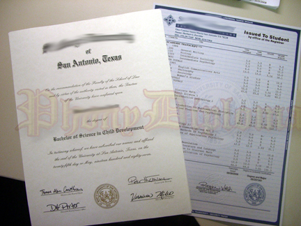 Fake Diploma And Transcript Sample