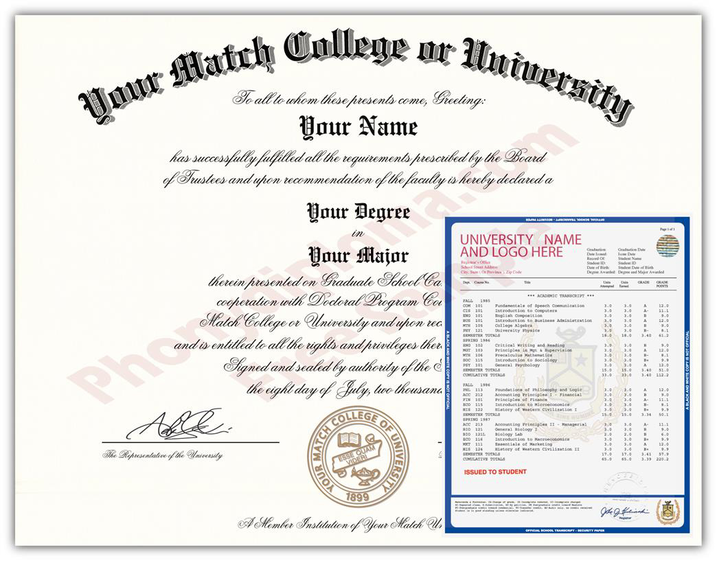 Actual Design Match Raised Gold Seal Diploma