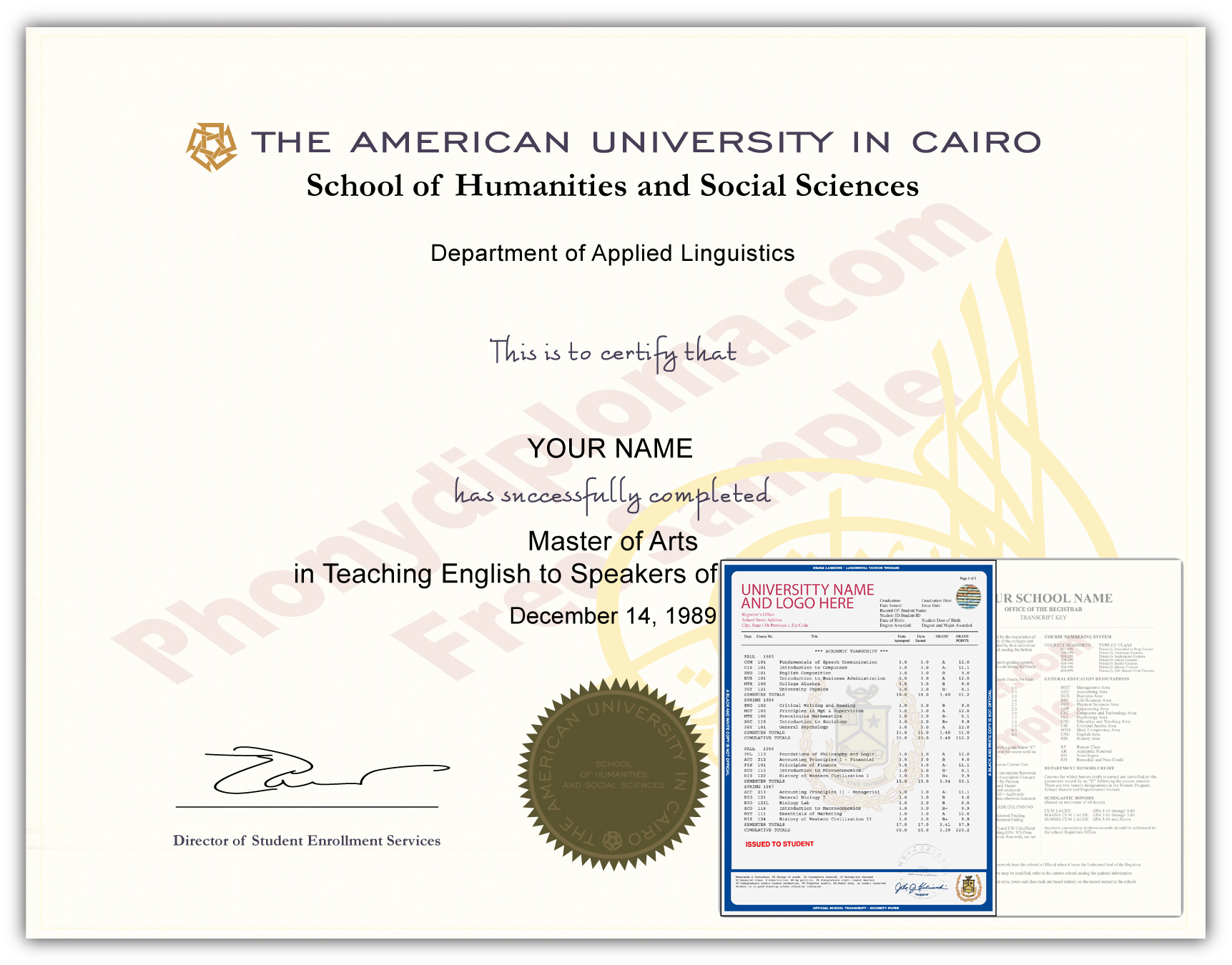 Fake Diploma and Transcripts from Egypt University