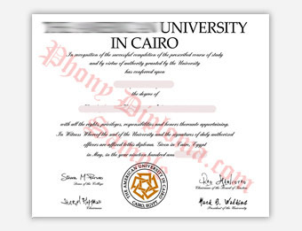 The American University in Cairo - Fake Diploma Sample from Egypt