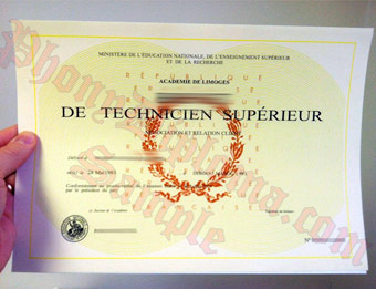Brevet de Technicien Superieur - Fake Diploma Sample from France