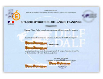 Diplome Approfondi de Langue Francaise - Fake Diploma Sample from France