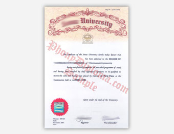 Anna University (2) - Fake Diploma Sample from India