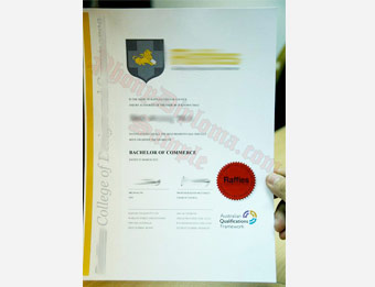 Raffles College of Design and Commerce - Fake Diploma Sample from Malaysia