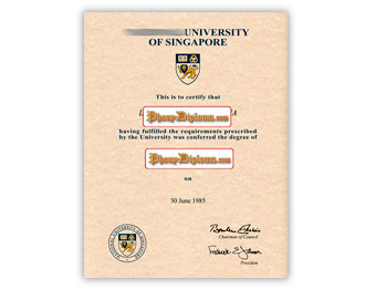 National University of Singapore - Fake Diploma Sample from Singapore
