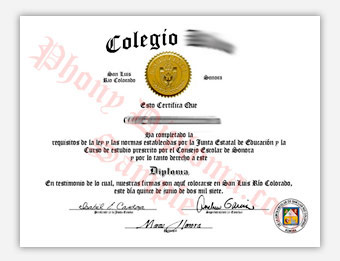 Colegio Kino - Fake Spanish Diploma Sample