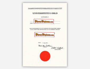 Universitetet I Oslo - Fake Diploma Sample from Sweden